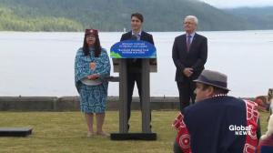 Government working with experts and indigenous communities to ensure salmon stocks are preserved